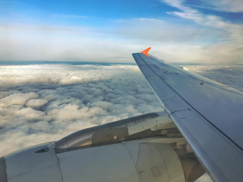 Чем кормит авиакомпания Россия между Питером и Москвой