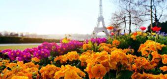 Москва — Париж 11 июня 2018 за 4800 руб. — Air France (билет до Франкфурта, выходим в Париже)